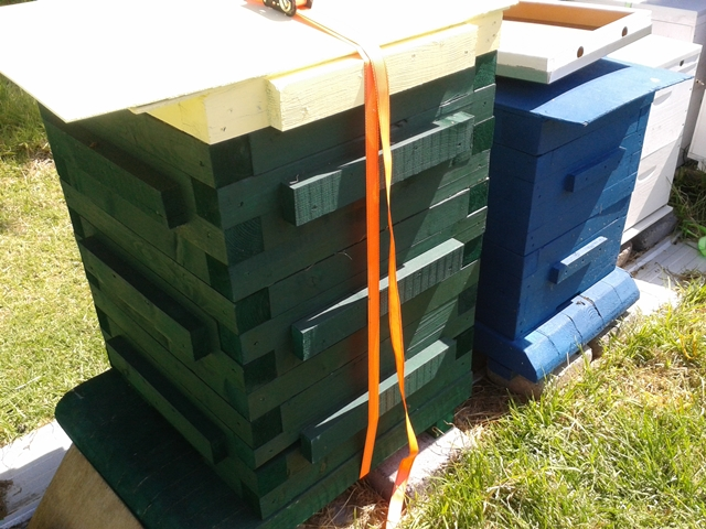 large square hive 60mm timbers